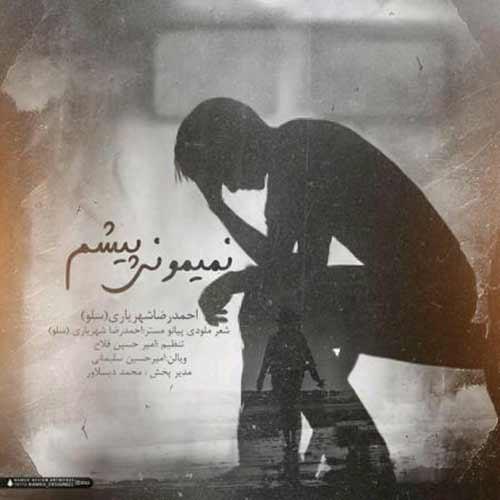 دانلود آهنگ جدید احمدرضا شهریاری به نام نمیمونی پیشم